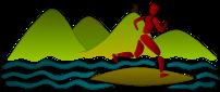 Logo Insellauf